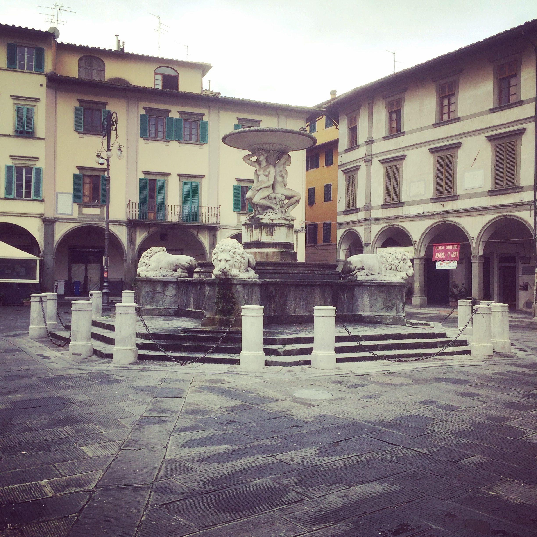 Empoli Piazza Dei Leoni 30 01 2016 4
