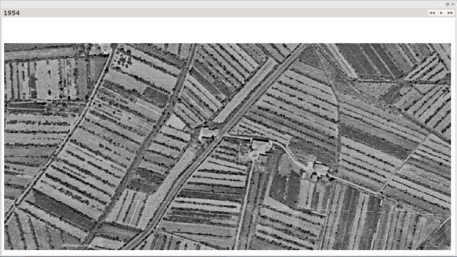 Anno 1954